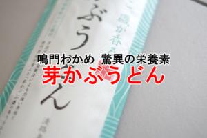 淡路島平野製麺所芽かぶうどん